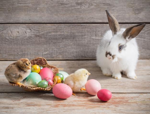 Pollo e coniglio con le uova di pasqua su spazio di legno