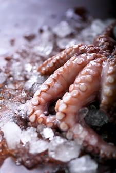 Polpo crudo fresco su ghiaccio, marrone scuro. vista dall'alto, copia spazio