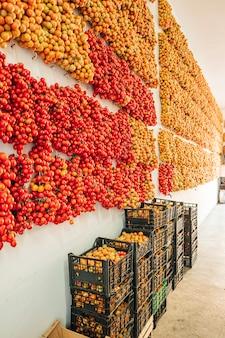 Pomodori ciliegia che appendono sulla parete nel sud dell'italia