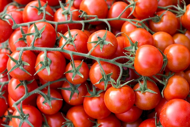 Pomodorini sul mercato di un contadino