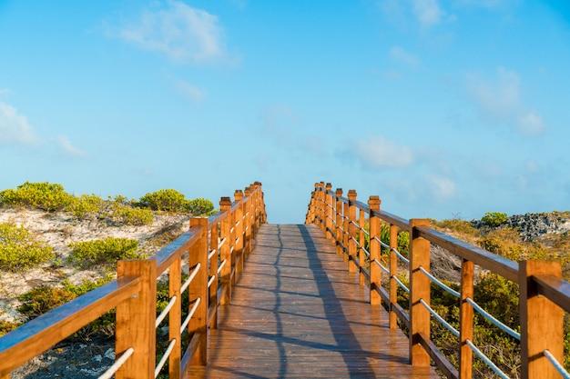 Ponte boscoso e mare turchese sull'isola tropicale