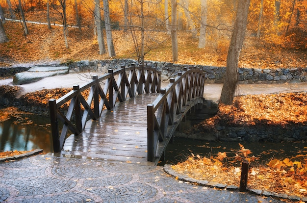 Ponte nel parco d'autunno