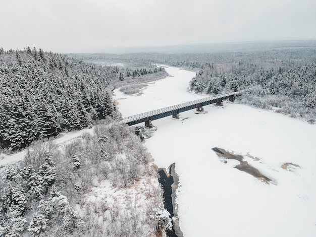 Ponte nella foresta di neve