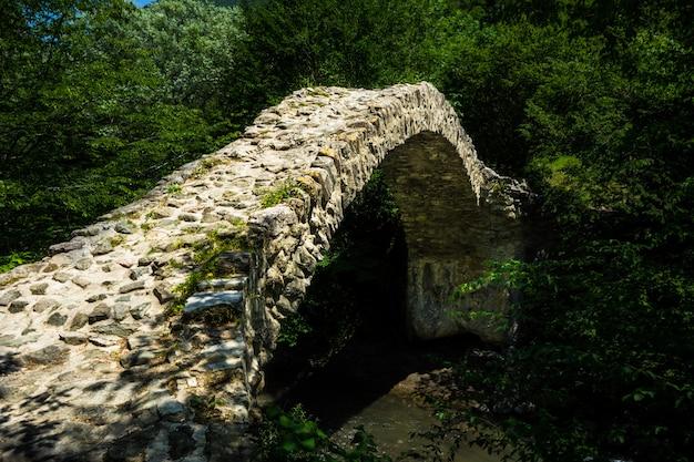 Ponte regina tamar