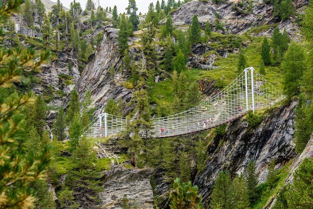 Ponte sul sentiero plima