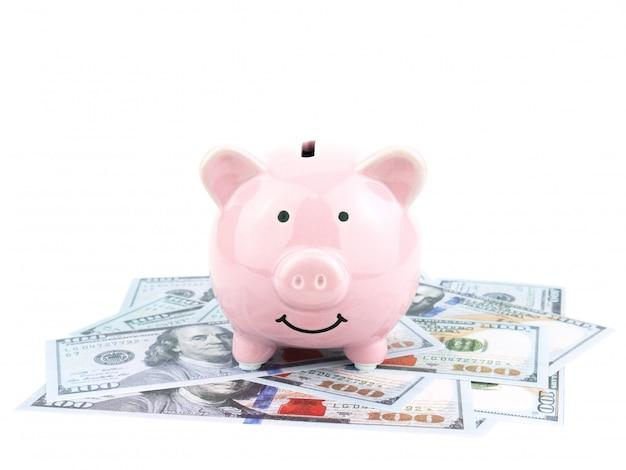 Porcellino salvadanaio rosa sulla banconota dei dollari isolata su fondo bianco, concetto di risparmio