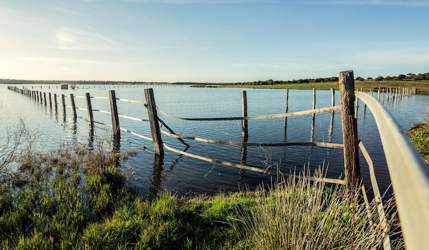 Posta di legno all'interno del lago con riflessi nell'acqua