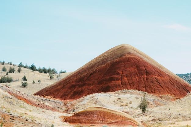 Prato coperto di rocce e vegetazione con colline