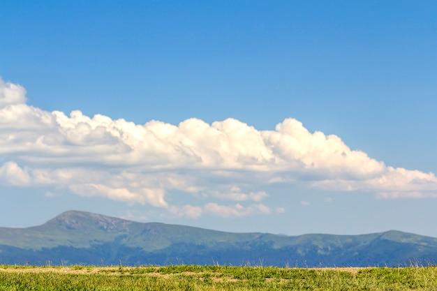 Prato dell'erba verde e montagne blu distanti