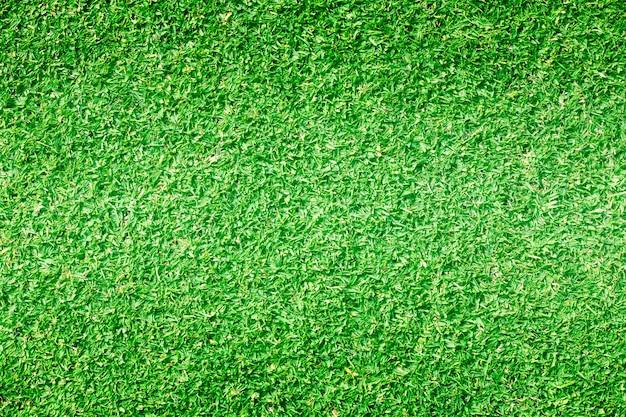 Prato verde dei campi da golf del fondo dell'erba