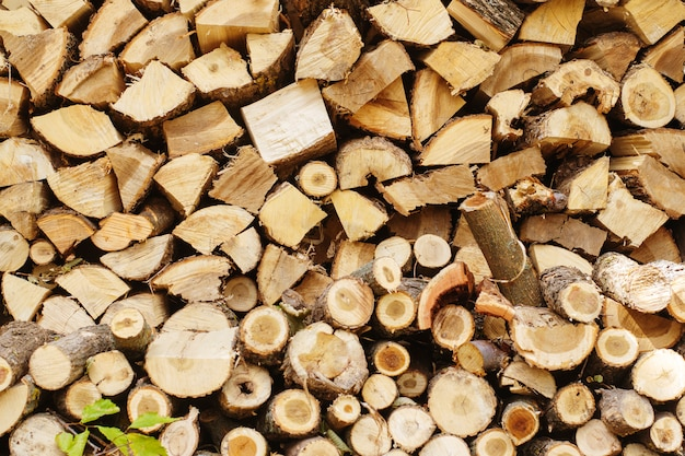 Preparazione della legna da ardere per l'inverno.