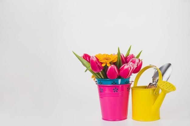 Primavera sfondo con fiori e latta di innaffiatura