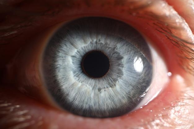 Primo piano a macroistruzione eccellente umano maschio dell'occhio azzurro
