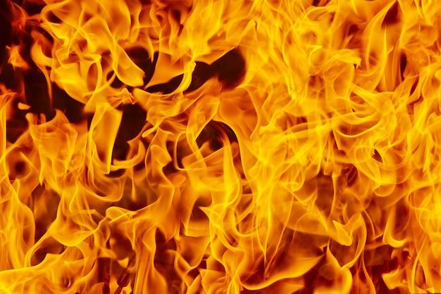 Primo piano arancione della fiamma del fuoco del fondo, incendio forestale della fiammata