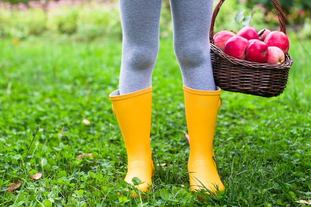 Primo piano del cestino con le mele rosse e gli stivali di gomma sulla bambina