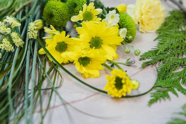 Primo piano del fiore giallo della camomilla contro il contesto concreto