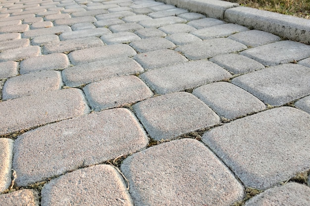 Primo piano del modo del percorso pavimentato pietra della lastra al parco o al cortile