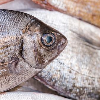 Primo piano del pesce fresco in negozio