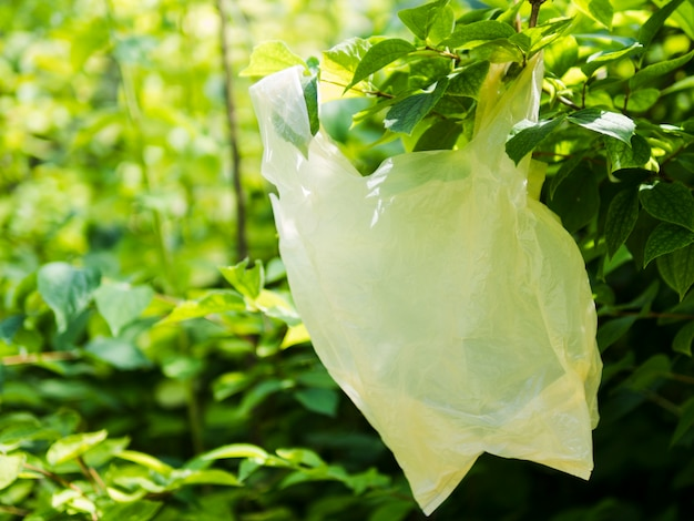 Primo piano del sacchetto di plastica che appende sul ramo di albero verde