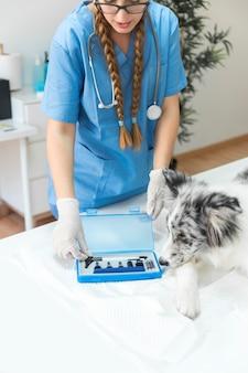 Primo piano del veterinario che apre la scatola dell'otoscopio sulla tavola