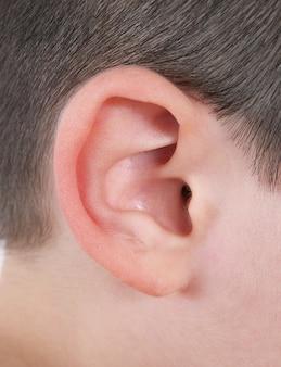 Primo piano dell'orecchio umano