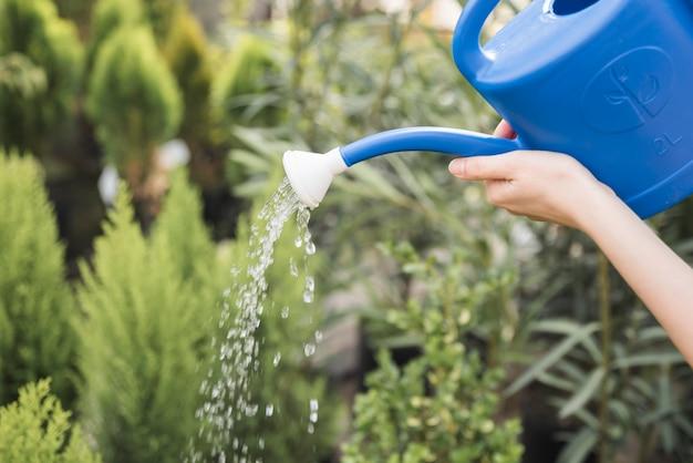 Primo piano della femmina che innaffia le piante con la latta blu
