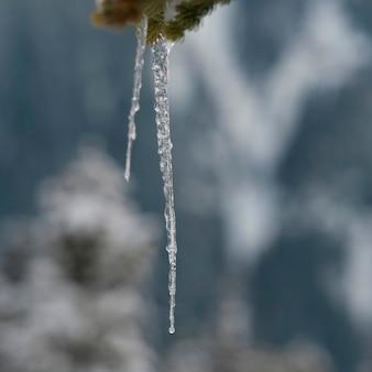 Primo piano della formazione dei ghiaccioli, whistler, columbia britannica, canada