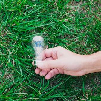 Primo piano della mano che tiene la lampadina su erba verde
