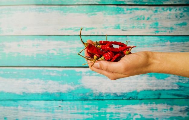 Primo piano della mano di una persona che tiene i peperoncini rossi asciutti rossi contro il fondo di legno della plancia