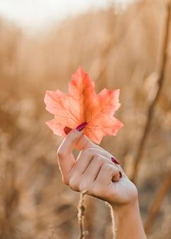 Primo piano della mano femminile che tiene la foglia di acero di autunno ad all'aperto