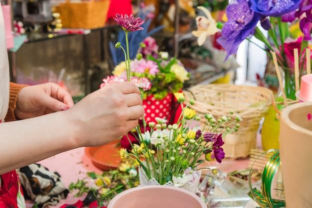 Primo piano della mano umana che organizza il fiore