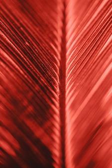Primo piano delle piante tropicali nel colore corallo vivente