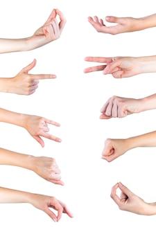 Primo piano delle raccolte di gesti di mano umana