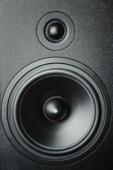Primo piano di altoparlanti ad alta e bassa frequenza, altoparlante a membrana