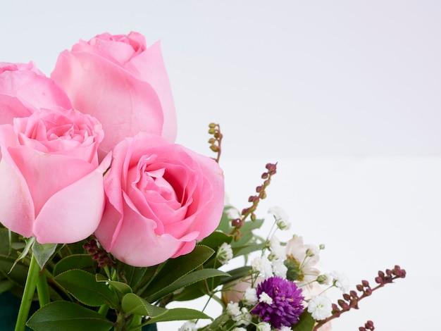 Primo piano di bei fiori della rosa di rosa