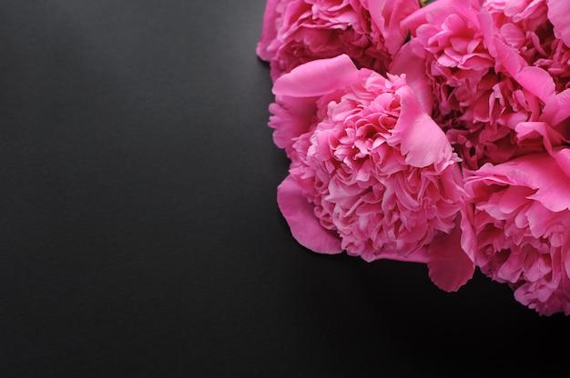 Primo piano di bello fiore rosa di peonie su fondo nero