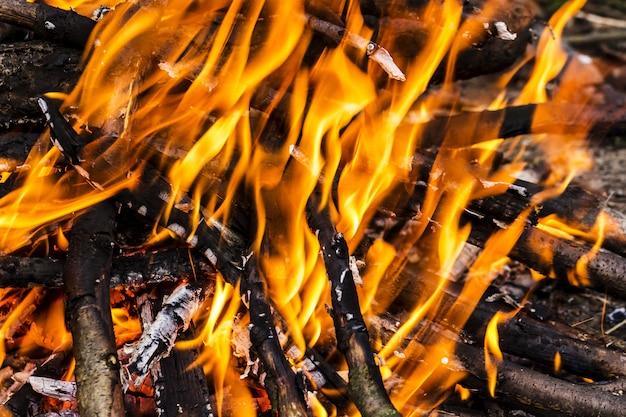 Primo piano di fuoco ardente, falò che brucia registri in grandi fiamme arancioni e gialle in primo piano del legno in fiamme
