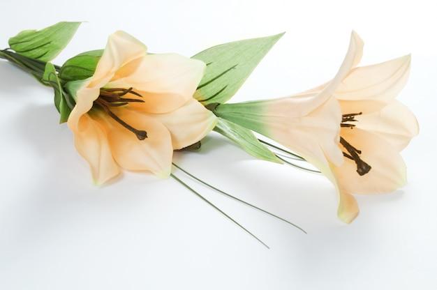Primo piano di gigli in fiore