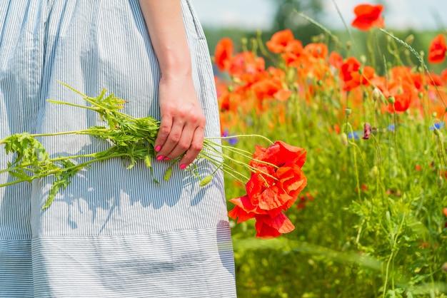 Primo piano di giovane bella donna tiene un mazzo di papaveri nelle sue mani in un campo di papaveri in una soleggiata giornata estiva
