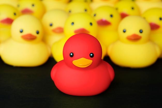 Primo piano di gomma duckies