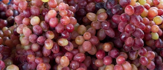 Primo piano di grappoli d'uva