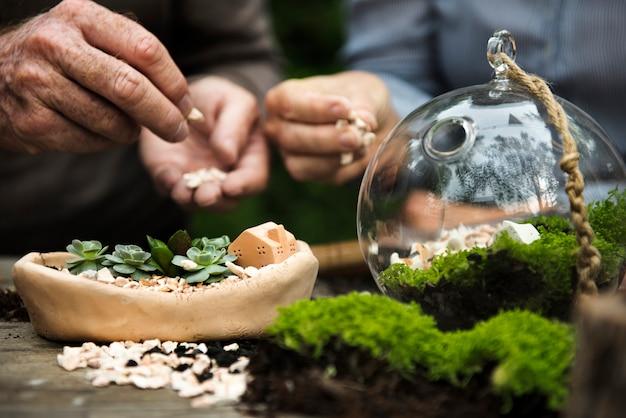 Primo piano di hobby terrario