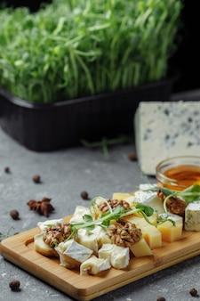 Primo piano di un piatto di formaggi. 4 tipi di formaggio, brie bianco morbido, camembert, bricchette semi-morbide, blu, roquefort, formaggio a pasta dura