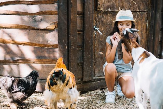 Primo piano di una capra e polli davanti alla ragazza
