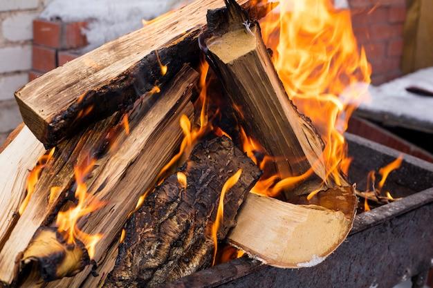 Primo piano di una fiamma a un picnic