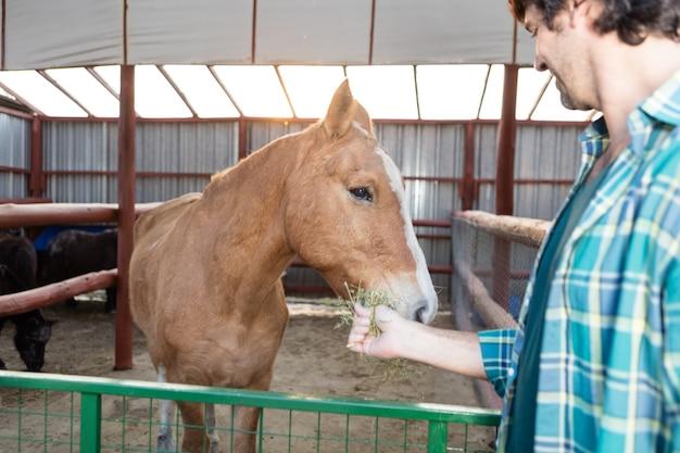 Primo piano di uomo che alimenta un cavallo