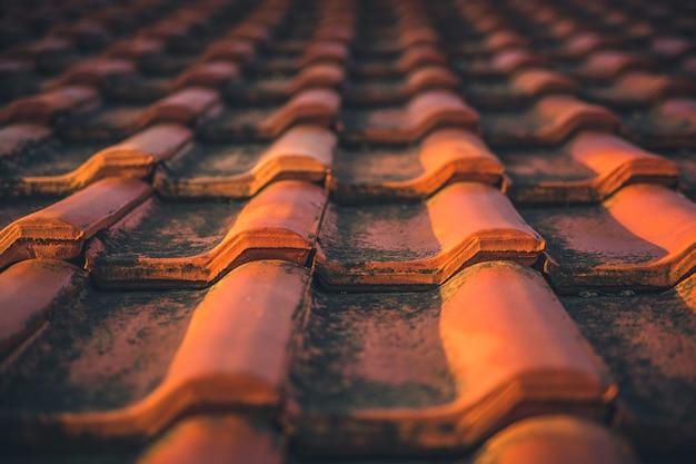 Primo piano di vecchie mattonelle di tetto ammuffite rosse. messa a fuoco selettiva