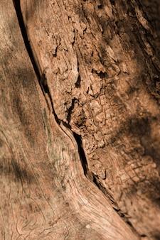 Primo piano di vecchio strutturato di legno