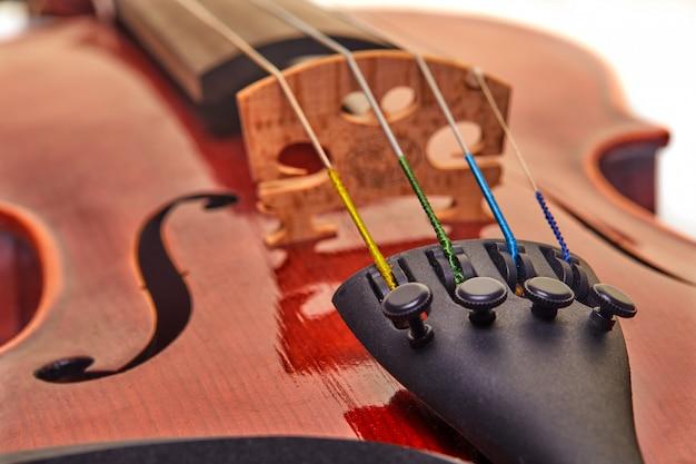 Primo piano di violino
