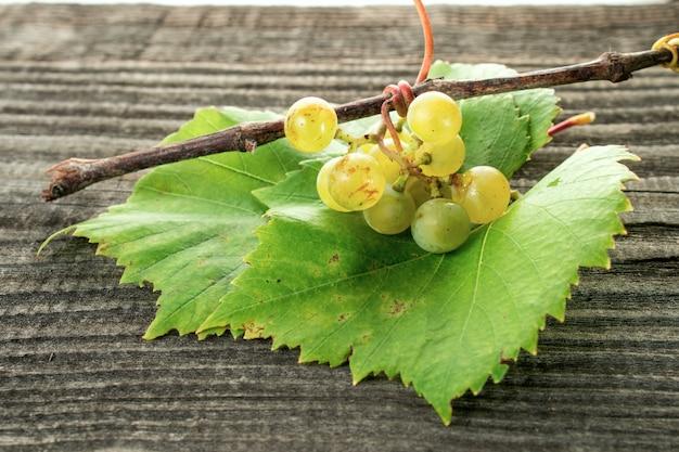 Primo piano fresco dell'uva casalinga sulla tavola